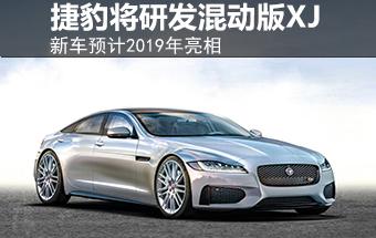 捷豹将研发混动XJ 新车预计2019年亮相