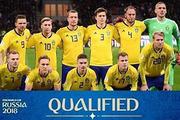 维京男儿瑞典队 稳定可靠如同沃尔沃